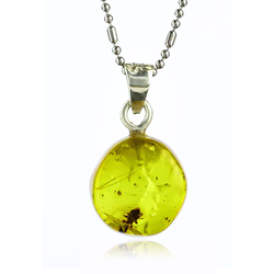 Very Rare Natural Amber Ant Sterling Silver Pendant 20mm x 9mm